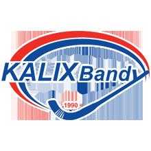 Kalix Bandy