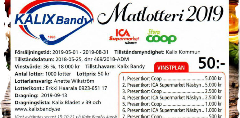 Bandy tabell 2019